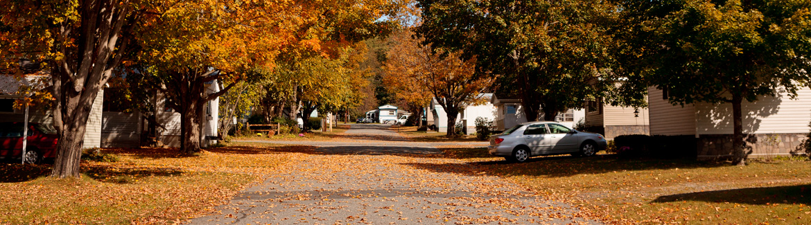 residential street in autumn