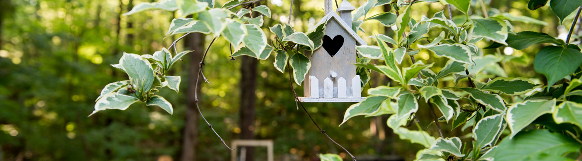 A birdhouse surrounded by greenery