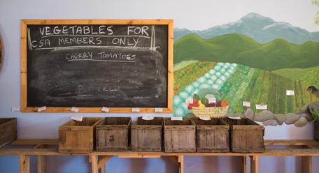 The CVSA pick-up table at Temple-Wilton Community Farm