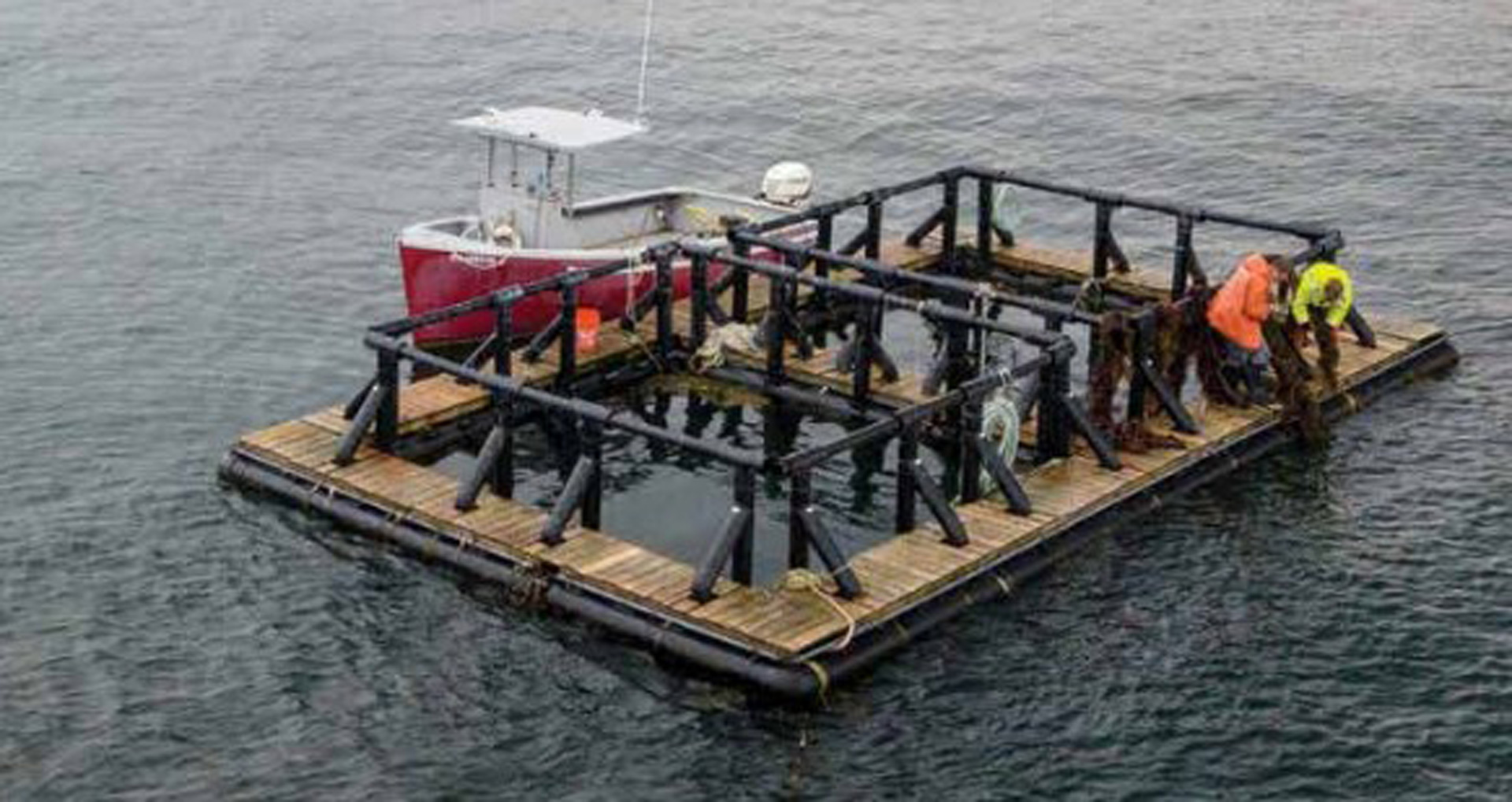 UNH's aquaculture studies are part of its sustainability program